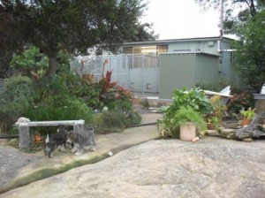 The garden and outside the nursery